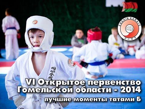 Первенство Гомельской области по Эншин каратэ 14 декабря 2014. Татами Б
