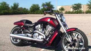 3. Used 2009 Harley Davidson V-Rod Muscle Motorcycles for sale - Orlando, FL