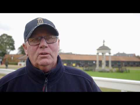 Tattersalls October Yearling Sale Book 3 Day 2 & October Video Review 2016