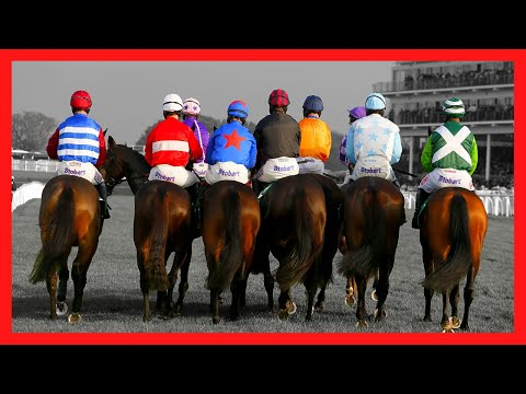 The Biggest Lie In Betting
