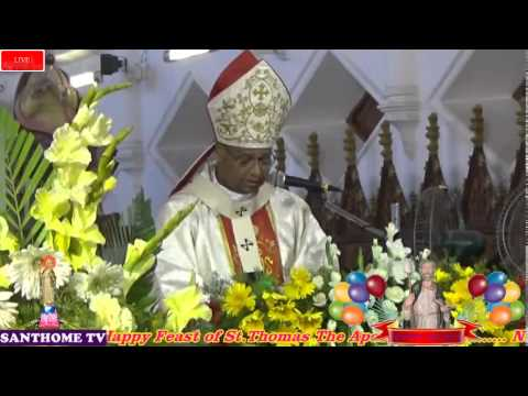Video Holy Mass download in MP3, 3GP, MP4, WEBM, AVI, FLV January 2017