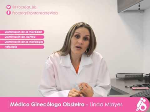 Procrear   Centros médicos, Ginecólogo