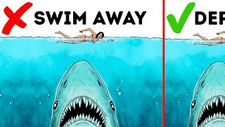 Video 10 Easy Ways to Survive a Wild Animal Attack MP3, 3GP, MP4, WEBM, AVI, FLV Mei 2018