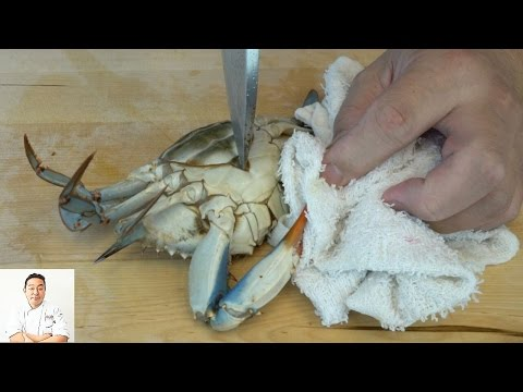 EXTREMELY GRAPHIC: Live Kill And Twice Cooked Blue Crabs
