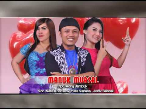 Download Lagu Nella Kharisma Ft.Jodik Seboul - Manuk Mursal [OFFICIAL] Music Video