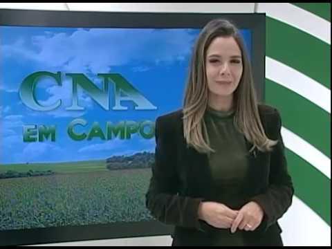 CNA EM CAMPO - CNA e Embrapa se unem para desenvolver forrageiras resistentes ao semiárido