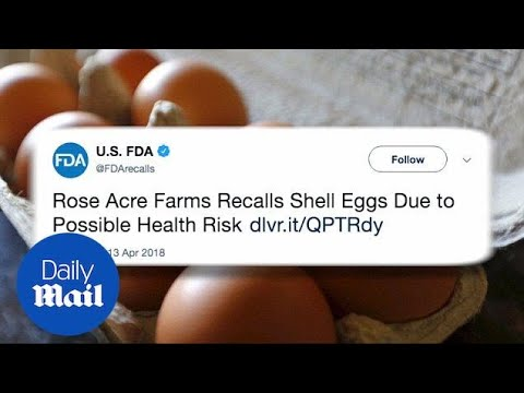 200 million eggs recalled for salmonella in United States - Daily Mail