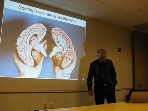 Download دوالیسم از منظر علوم اعصاب  1/2 Dr. Hossein Esteky : Splitting the brain splits the mind hd file 3gp hd mp4 download videos