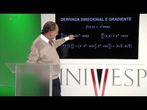 Cálculo e Geometria Analítica - aula 09 - Derivada direcional e gradiente