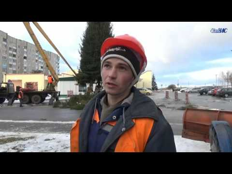 Установка в Волковыске новогодних ёлок