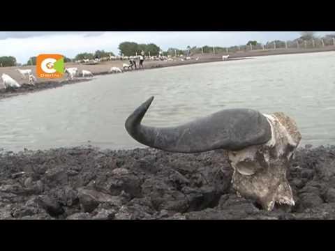 Deadly drought 7 people dead in Garissa