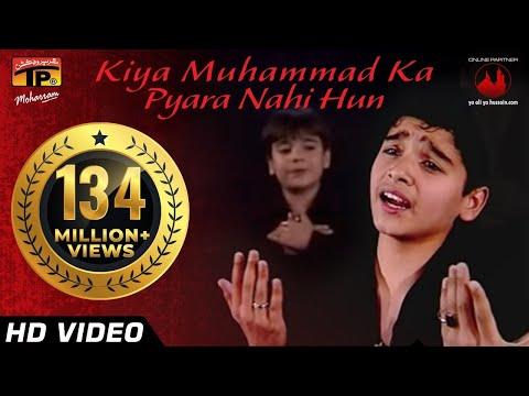 Video Kiya Muhammad Ka Pyara Nahi Hun, Ali Shanawar & Ali jee 2013 14 download in MP3, 3GP, MP4, WEBM, AVI, FLV January 2017
