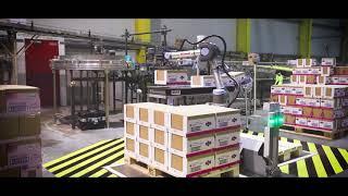 Video: Roboty spolupracují