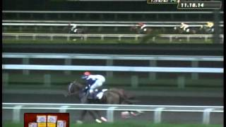 RACE 2 SUPER SPICY 11/18/2014