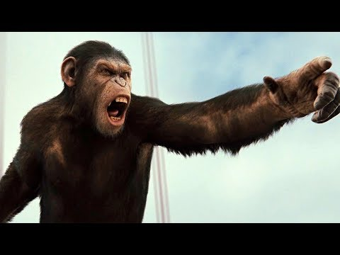 Apes vs Humans - Battle For The Bridge Scene - Rise of the Planet of the Apes (2011) Movie Clip HD