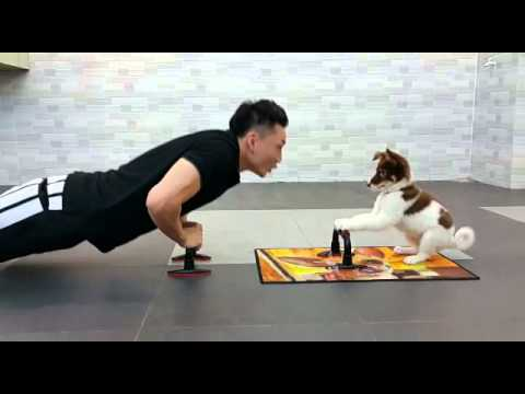 VIDEO: Fitness With A Puppy! (so cute)