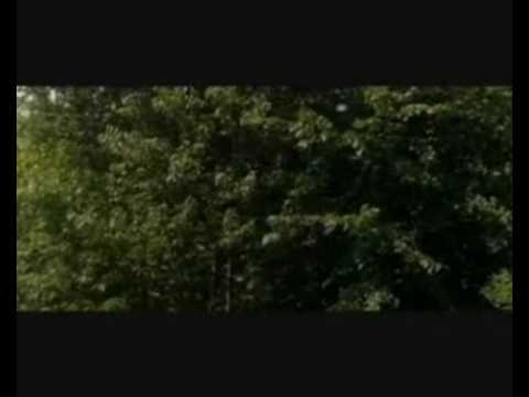"Afterwards (Et Après) - ""The Wonder of Life"" by  Alexandre Desplat"