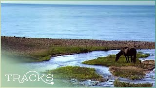 Video The Sunken City of Lyesh: Everything You Didn't Know (Full Documentary) | TRACKS MP3, 3GP, MP4, WEBM, AVI, FLV Agustus 2019