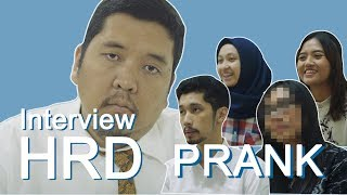 Video PRANK INTERVIEW HRD MP3, 3GP, MP4, WEBM, AVI, FLV Oktober 2018