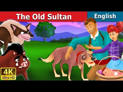 The Old Sultan Story in English | Fairy Tales in English | Bedtime Stories | English Fairy Tales