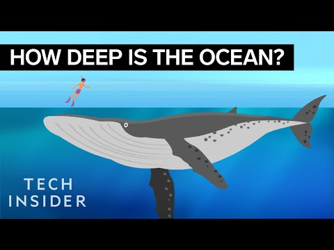 The Ocean's Extreme Depth is Mind Blowing