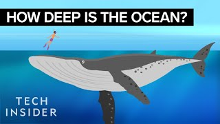 Download Youtube: This incredible animation shows how deep the ocean really is