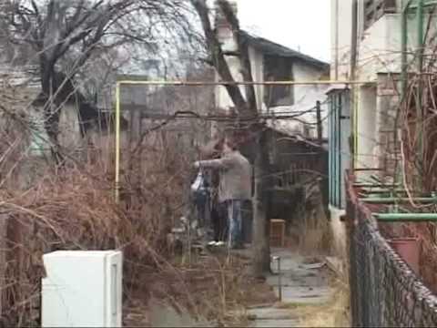 A sfarsit in gradina