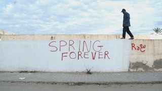 Spring Forever. The Tragedy And The Causes Of The Arab Spring