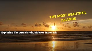 Exploring The Aru Islands
