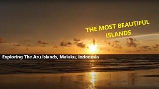 Exploring The Aru Islands
