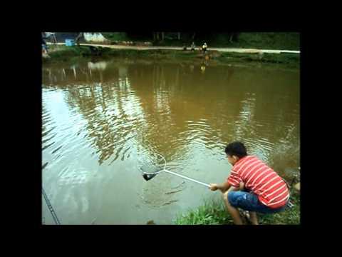 Pescaria no Ponte Preta
