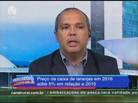 Assessor técnico da CNA fala sobre aumento no preço pago pela caixa de laranja