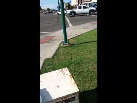 Catching a panhandler - so satisfying!