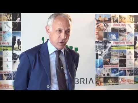 """Agostini: """"Sviluppumbria perno della crescita regionale"""""""