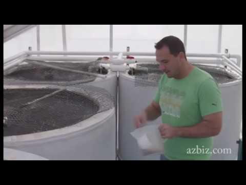 Next Generation: Fish farming and fertilizing