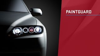 Paintguard Appearance Protection Product