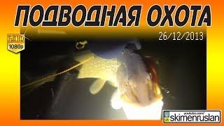 ПОДВОДНАЯ ОХОТА Река Южный Буг 26.12.2013.