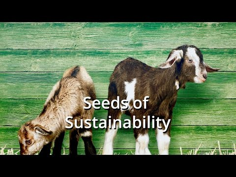 Seeds of Sustainability Episode 1