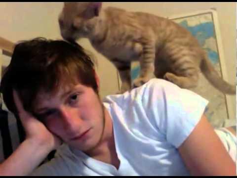 Katt tar hand om sin ägare