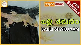 Download Lagu Lizard Science | Balli Shakunam w/subtitles|బల్లి మీద పడిందా|Superstition or Belief|Nammakam Nijam Mp3
