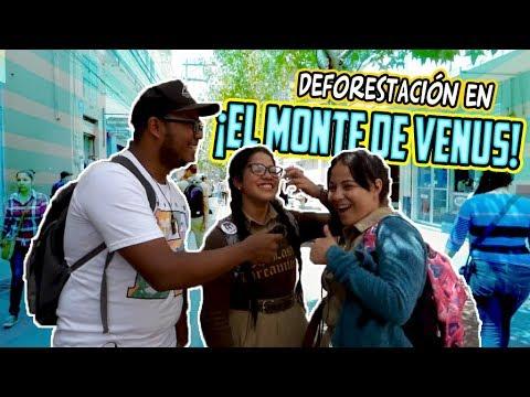 Preguntas en el centro de Tegucigalpa - Honduras - Cultura General