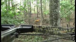 Don\'t Dry-Fire Your Crossbow