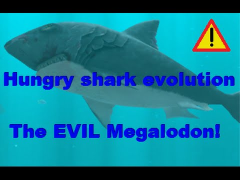 Hungry shark evolution (the Evil megalodon)