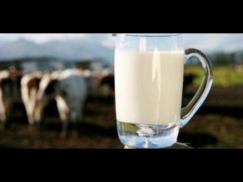 أضرار صحية بسبب تناول الحليب والألبان.. تعرف عليها