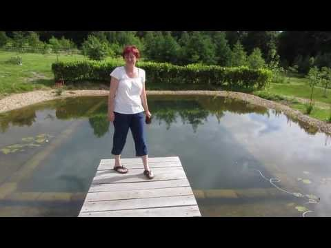 The Positive Effects Of Natural Swimming Pools Permaculture Magazine