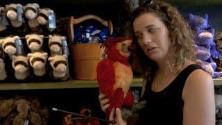 Universal Orlando Vacation November 2015: Day 6 Part 3- Diagon Alley & Hogsmeade (Episode 196)
