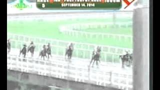 RACE 5 PAPA JOE 09/14/2014