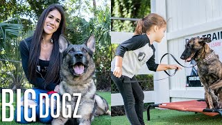 Training $70K Attack Dogs... With Our 4 Year-Old | Big Dogz by Barcroft Animals