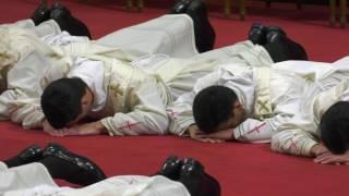 El cardenal Bertello ordena a 31 sacerdotes de 16 países