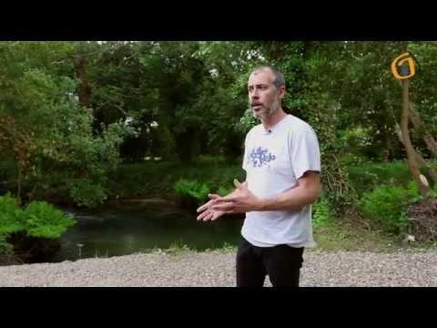 A saude do río Miñor